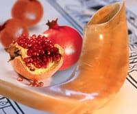 Shofar and Poms