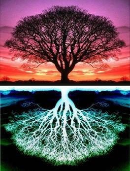 tubeshvat - double tree