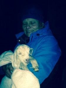 kid 2 goats 2014