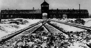 Holocaust276