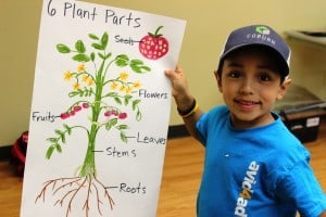 Eco Fun boy with poster