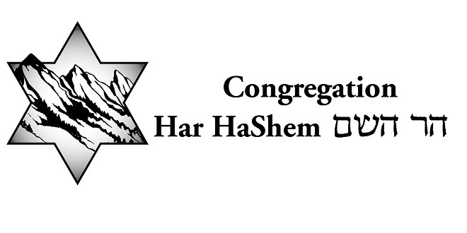 Har HaShem's Ongoing Spiritual Support Group for Mental Illness
