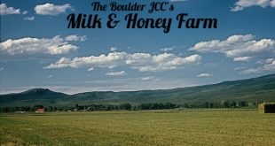Teens: Help Milk and Honey Farm Build a Coop