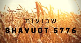 Shavuot 5776 Banner - No Link