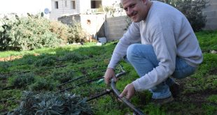 Clive Lipchin, Director of the Arava Institute's Center for Transboundary Water Management, works on a greywater system.