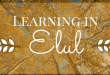 Don't Miss Upcoming Elul Learning Opportunities