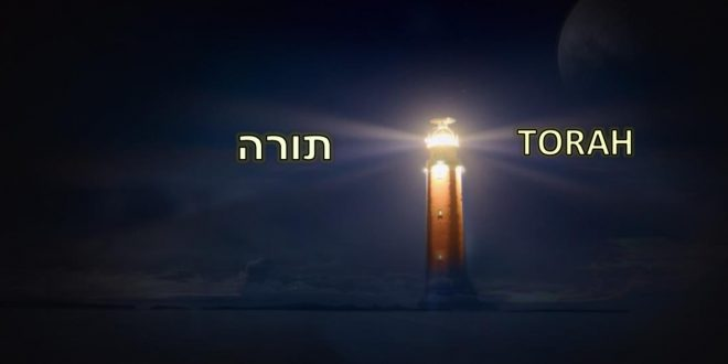 The Light of Torah Guides Us Through Challenging Times